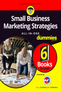 Small Business Marketing Strategies All In One for Dummies 6 Books in One